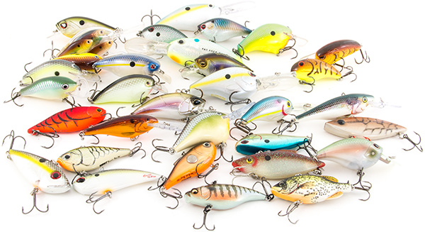 Best Fishing Lures Bass Fishing Facts